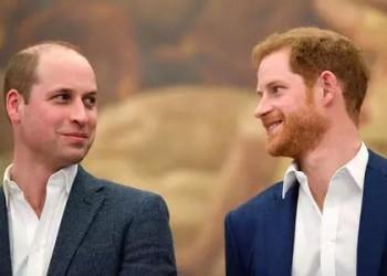 为何英国王子们决定不系领带?